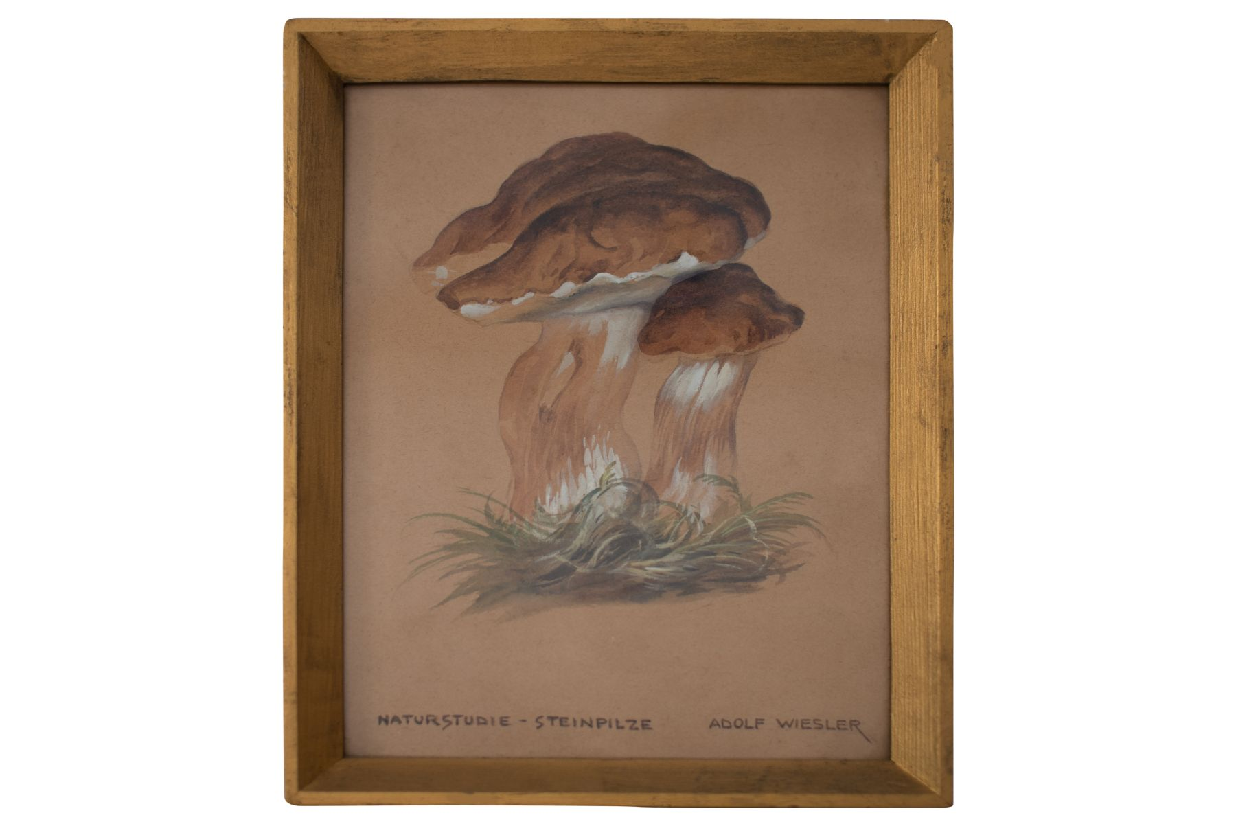 "#93 Porcini mushrooms | Adolf Wiesler(1878-1958) ""Steinpilze"" Image"