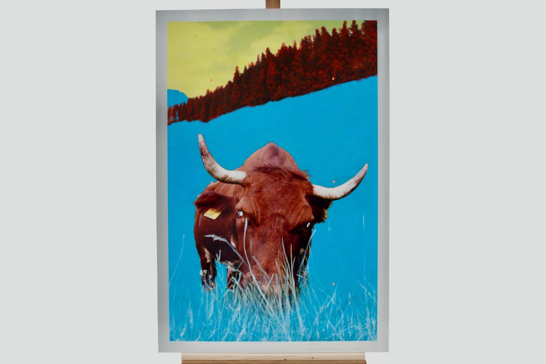 "#92 Stefan Waibel (1970) "" Alpenwarrior"" | Mag. Stefan Waibl (1970) ""Alpenwarrior"" Image"