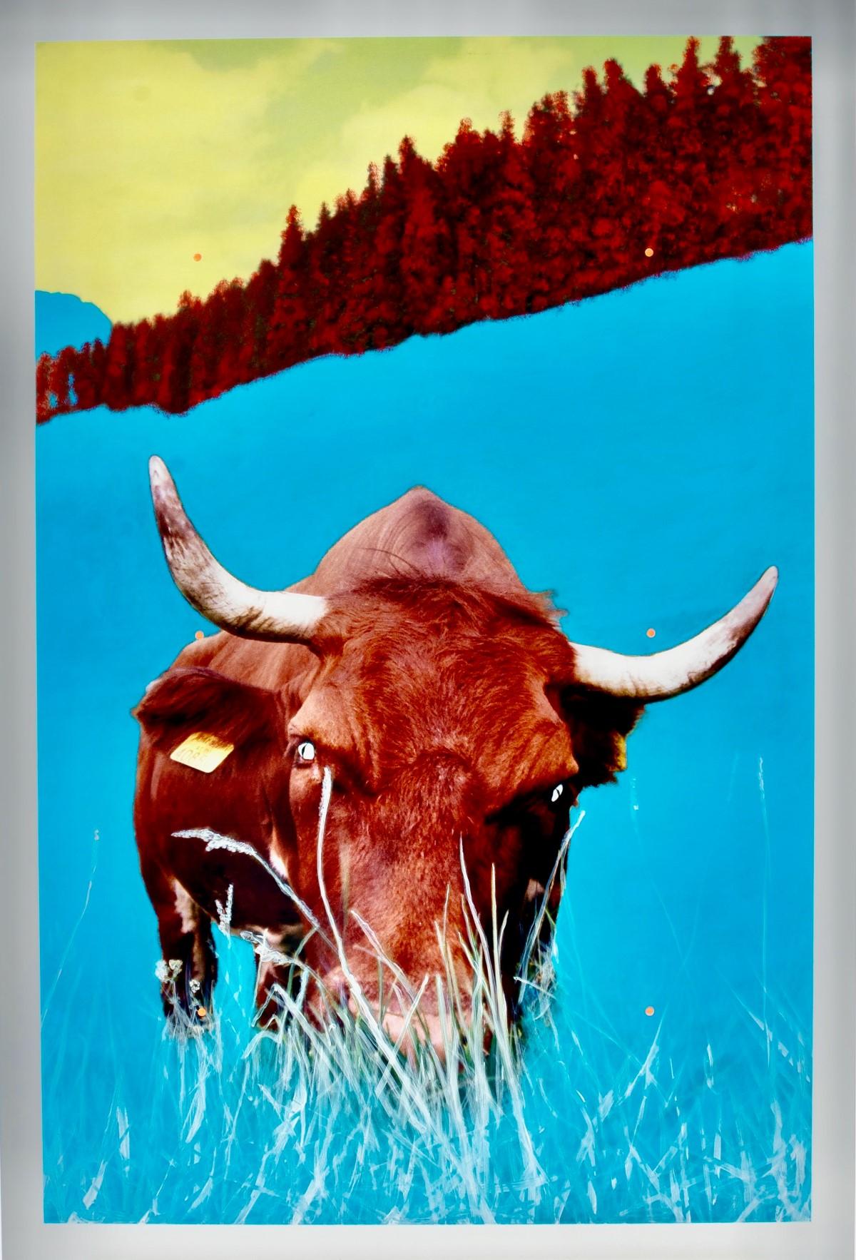 #52 Stefan Waibl (1970), Alpenwarrior | Stefan Waibl (1970) , Alpenwarrior Image